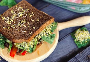 Sándwich integral de verduras y germinados